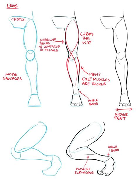 Drawing Legs by Legs Drawing At Getdrawings Free For Personal