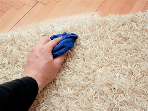 how to get stains out of carpet 6 ways to get stains out of carpet wikihow