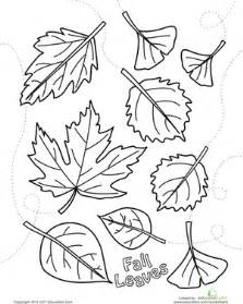 falling leaves coloring autumn leaves coloring page worksheet education