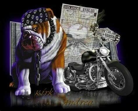 dog  motorcycle bikers graphics  facebook tagged facebook tumblr  friendster