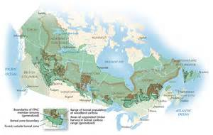war for the woods boreal forest agreement canadian