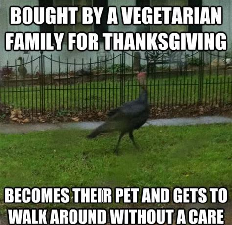 Turkey Memes - happy thanksgiving 2017 turkey day memes to wish your