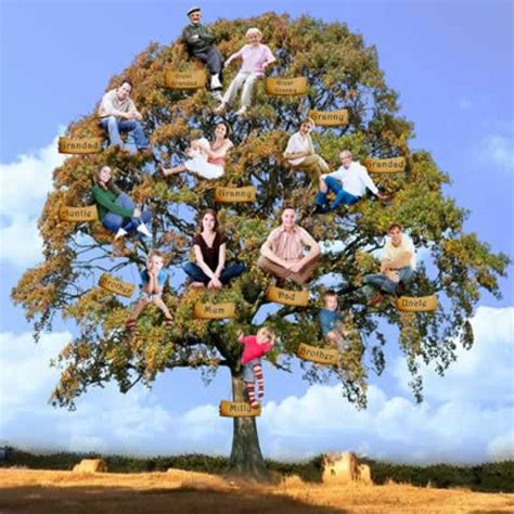 tree portraits enhance me magical portraits family tree portrait