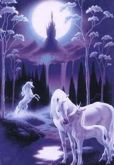 imagenes de unicornios y pegasos 56 best fractal and other art stunning images on