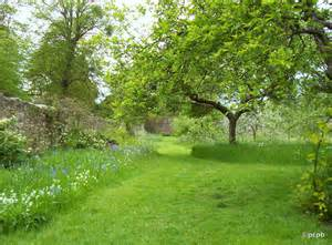 What Is A Walled Garden by Walled Garden In Spring Pocketcameraphotoblogger