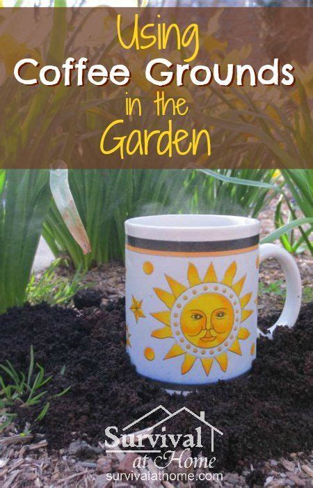 coffee grounds vegetable garden 1000 images about gardening tips on gardens