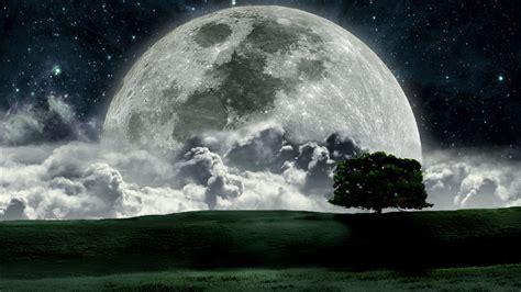 wallpaper dark moon 2936 dark forest moon full hd wallpaper walops com