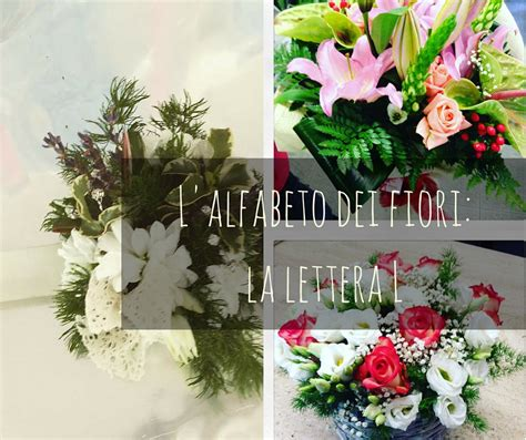 alfabeto dei fiori l alfabeto dei fiori la lettera l