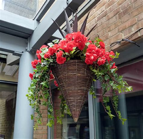 top tips for planting and maintaining your hanging baskets