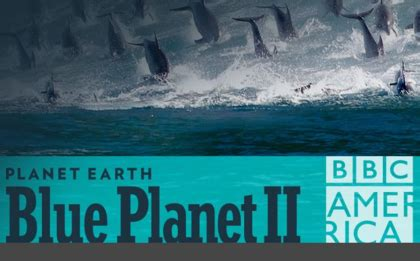 Dish Sweepstakes - dish bbca s blue planet ii 4k tv sweepstakes sun sweeps
