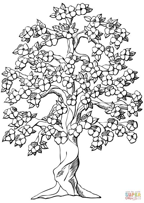coloring pages apple tree flowering apple tree coloring page free printable