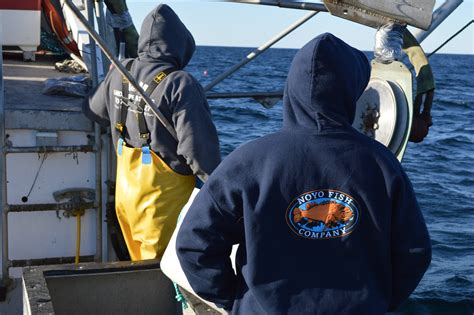 fishermen struggle in of dungeness crab fishery