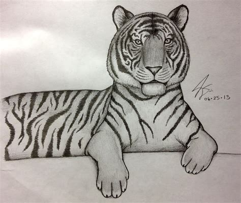 tiger easy gallery easy tiger with pencil drawing gallery