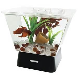 32. Decorative Turtle Fish Bowl