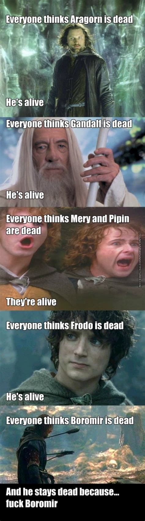 Funny Lotr Memes - lord of the rings heroes funniest pictures