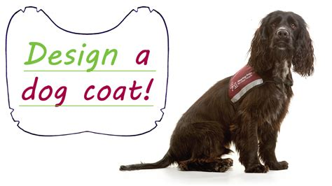 design your own hoodie for dogs design your own dog coat photo 1 dress the dog