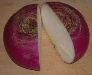 come si cuoce il sedano rapa crema autunnale di radici rotfruktsoppa diario nordico