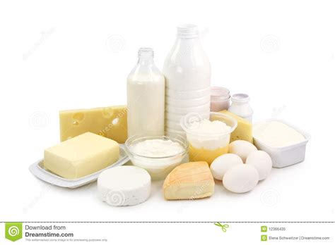 dairy products and eggs royalty free stock photo cartoondealer com 12366435