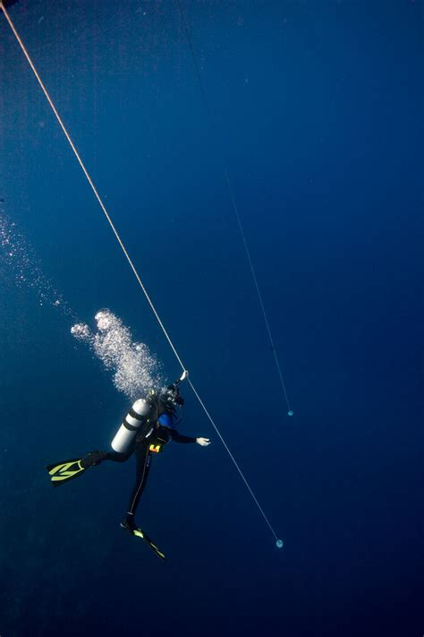 dive a diver oceano scuba