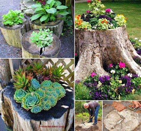 Planting The Chic In Cheap by How To Create A Tree Stump Planter Planters Doors And