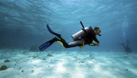 dive vacation scuba diving vacations florida dive vacations at