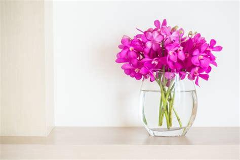 foto di fiori da scaricare gratis vaso di fiori con i fiori scaricare foto gratis
