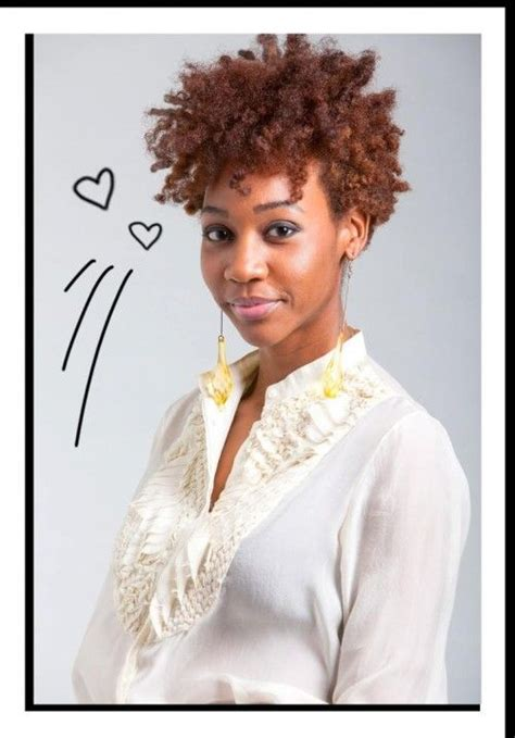 Best Hair Dryer For Curly Hair Canada 116 best images about au naturale on black hairstyles black and