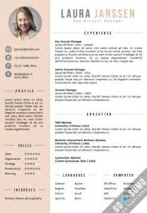cv resume templates best 25 cv template ideas on layout cv