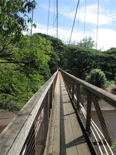 swinging bridge kauai free stock photos rgbstock free stock images waimea