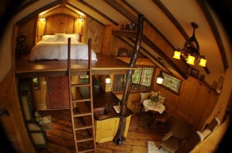 tree house bedroom tree house bedroom one day