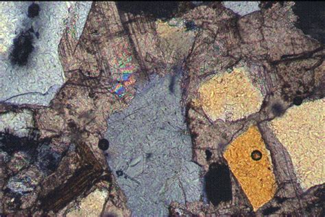 calcite cement in thin section photomicrographs north coles levee field 7 photos