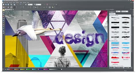editing layout buy magix xara photo and graphic designer from authorized