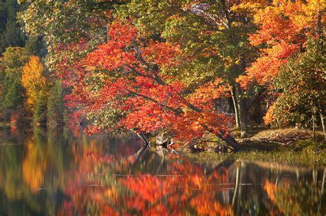 fall colors in maine fall foliage explore mountain fall foliage in maine