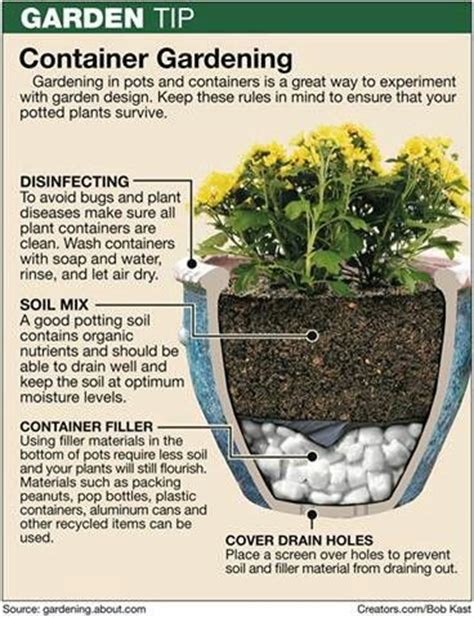 how to build container garden 25 best ideas about container gardening on
