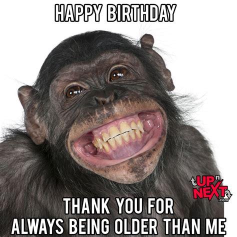Happy Birthday To Me Meme - funny happy birthday monkey www pixshark com images