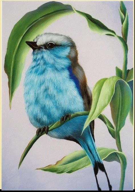 cool colored pencil drawings 40 creative and simple