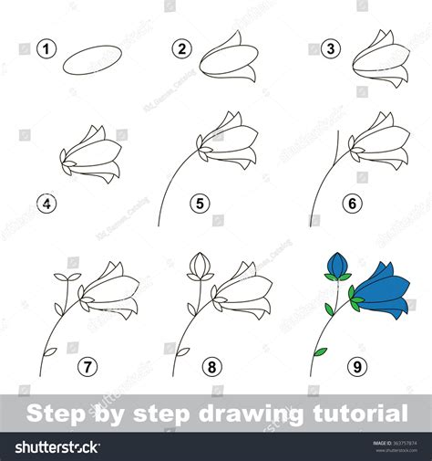 doodle draw step by step step by step drawing tutorial vector stock vector