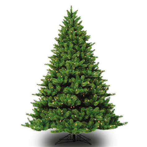 9 ft x 72 in appalachian deluxe fir barcana