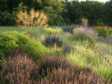 piet oudolf the meadow