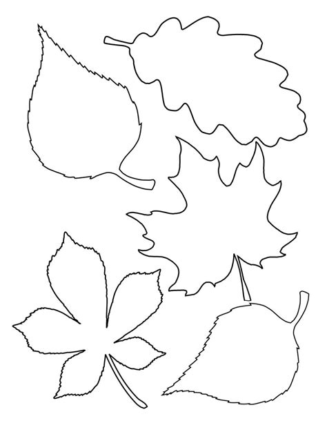 printable cardstock shapes print leaf template onto colored 8x10 card stock use the
