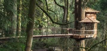 Pictures Of A Treehouse - treehouse point