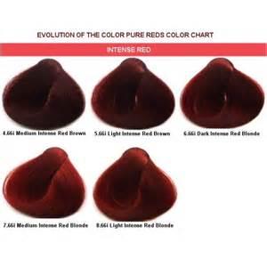 alfaparf color chart alfaparf evolution of the color reds 2 05oz www
