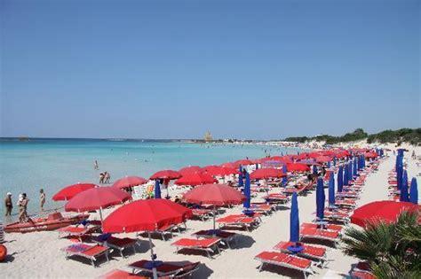 hotel sulla spiaggia porto cesareo spiaggia 3 foto di le dune porto cesareo tripadvisor
