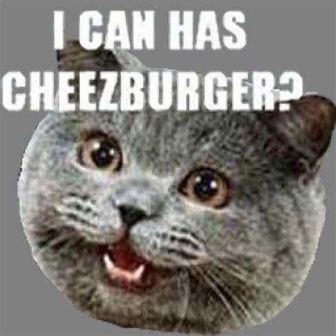 I Can Has Cheezburger by I Can Has Cheezburger Team Fortress 2 Sprays