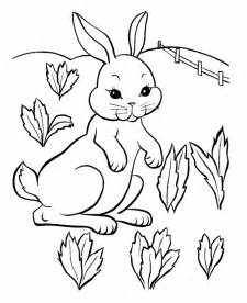 Pitchers Of Bunnies Az Coloring Pages