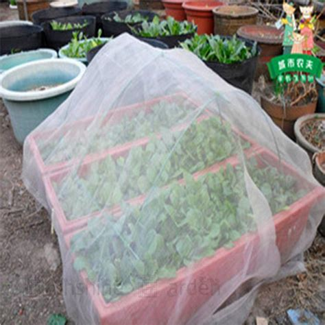 popular garden vegetables popular vegetable garden netting buy cheap vegetable