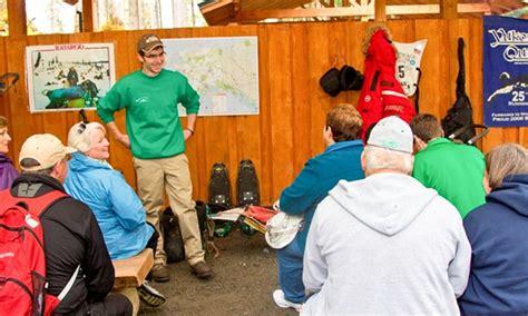 juneau sledding juneau sled discovery alaska shore tours