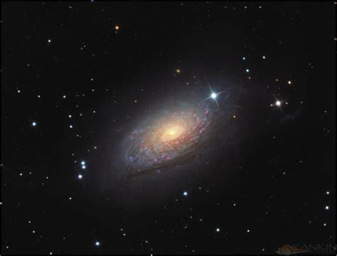 sunflower galaxy messier 63 the sunflower galaxy rankinstudio
