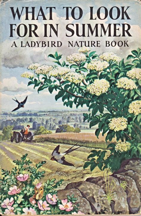 nature books vintage ladybird book what to look for in summer nature