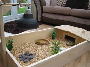 Pinterest   Tortoise Enclosure, Tortoise Habitat and Russian Tortoise